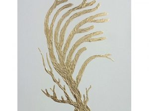 Golden Coral - Artwork